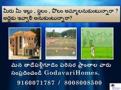 Godavari Homes
