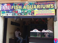 ANU Fish AQUARIUMS