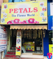 PETALS (The Flower world)