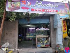 Madina Pet Shop
